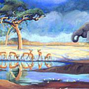 Botswana Watering Hole Poster