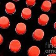 Bottles Red Caps Poster by Sami Sarkis