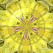 Bouquet Of Roses Kaleidoscope 12 Poster