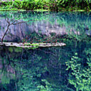 Branch And Reflections At Alley Spring State Park Poster