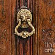 Brass Door Knocker Poster