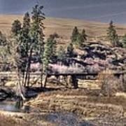 Bridge Over A Creek Poster