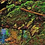 Brook Texture 49 Poster