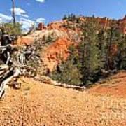 Bryce Canyon Canyon Poster