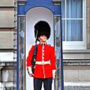 Buckingham Palace Poster by Barry R Jones Jr