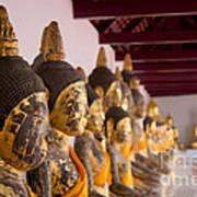 Buddha Culptures Poster