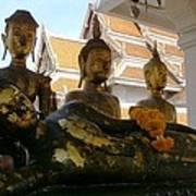 Buddha Figures Poster