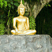 Buddha Statue Under Green Tree In Meditative Posture Poster
