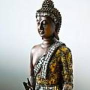 Buddha Statue With A Golden Robe Poster