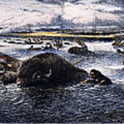 Buffalo Hunt, 1874 Poster