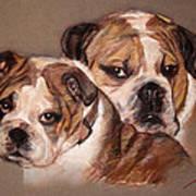 Bulldogs Poster
