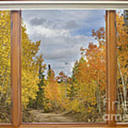 Burning Autumn Aspens Back Country Colorado Window View Poster