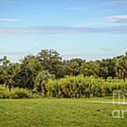 Busch Gardens Landscape Poster