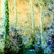 Bush Trail At Sunrise Poster