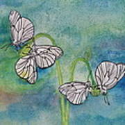 Butterflies Hanging Out Poster