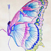 Butterflly Print Poster