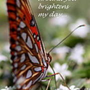 Butterfly Friendship Card Poster