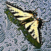 Butterfly In Rain Poster by Susan Leggett