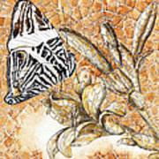 Butterfly Mosaic 02 Elena Yakubovich Poster