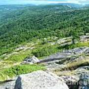 Cadillac Mountain Rocky View Poster