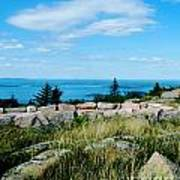 Cadillac Mountain Summit View Poster