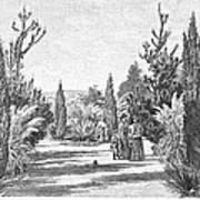 California: Pasadena, 1890 Poster