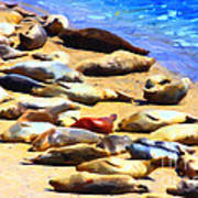 California Sunbathers . Harbor Seals Poster by Wingsdomain Art and Photography