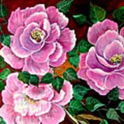 Camellias Poster
