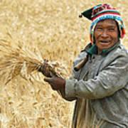 campesino cutting wheat. Republic of Bolivia. Poster