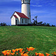 Cape Blanco Lighthouse Oregon Poster
