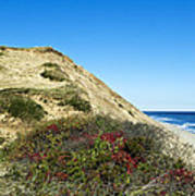 Cape Cod Dune Cliff Poster