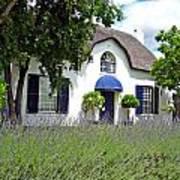 Cape Dutch Cottage Poster