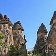 Capped Rock Formations Of Cappadocia Poster by Alexandra Jordankova