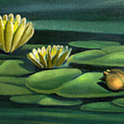 Card Of Frog With Lily Pad Flowers Poster