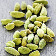 Cardamom Seed Pods Poster