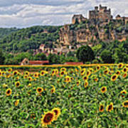 Castle In Dordogne Region France Poster