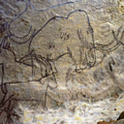 Cave Art - Mammoth And Ibexes Poster