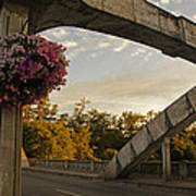 Caveman Bridge Arch And Flowers Poster