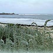 Celadon Seascape Poster