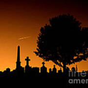 Cemetery And Tree Poster