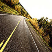 Center Lines Along A Paved Road In Autumn Poster
