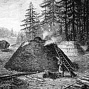 Charcoal Production, 19th Century Poster