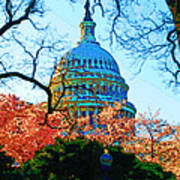 Cherry Blossoms And Capital Dome Poster