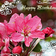 Cherry Blossoms Greeting Card  Bi Poster