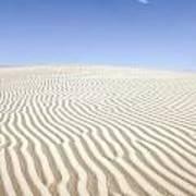 Chihuahuan Desert Dunes Poster