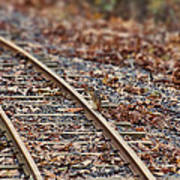 Chipmunk On The Railroad Track Poster