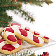 Christmas Cookies Decorated With Real Tree Branches Poster