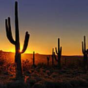 Christmas Morning In Arizona  Poster