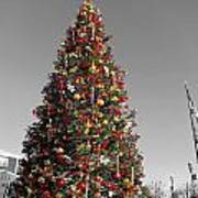Christmas Tree At Pier 39 Poster