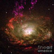 Circinus Galaxy Poster